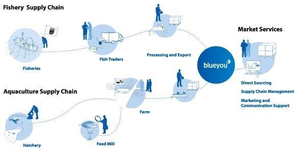 Supplier Shrimp Mail: Blueyou.com, Products & Supply Chains, Supply Chain Services